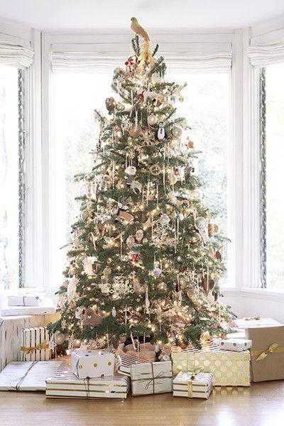 Orlando Soria Christmas Tree Guide Christmas Tree All Things Christmas