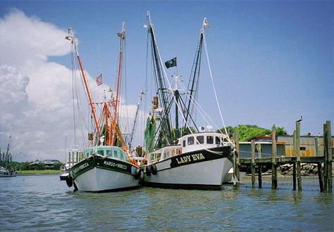 Shem Creek shrimp boats, Charleston, SC