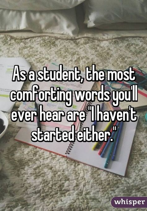 """As a student, the most comforting words you'll ever hear are """"I haven't started either."""""""