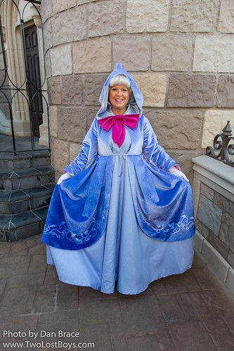 Fairy Godmother At Disney Character Central Fairy Godmother
