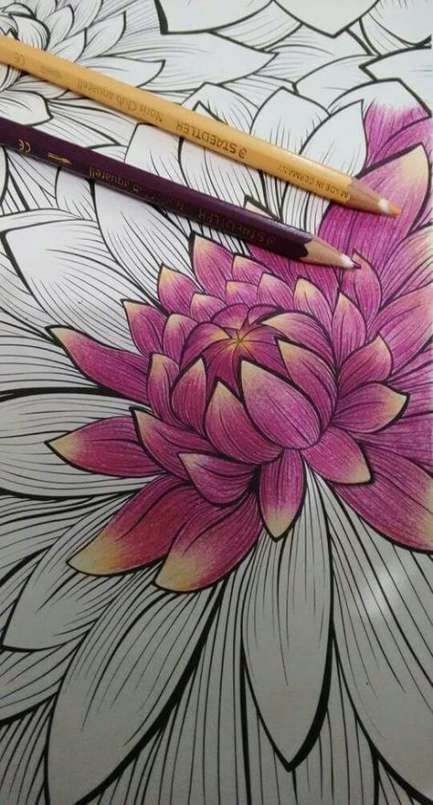 Coloring And Drawing Ideas