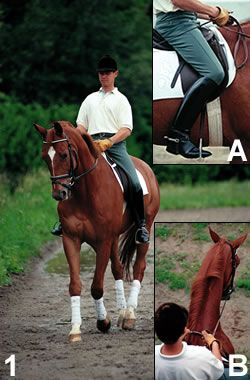 Here's How: Leg-Yield Your Horse