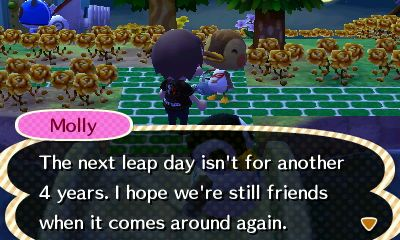 Leap Day 2020 Leap Day Animal Crossing New Leaf