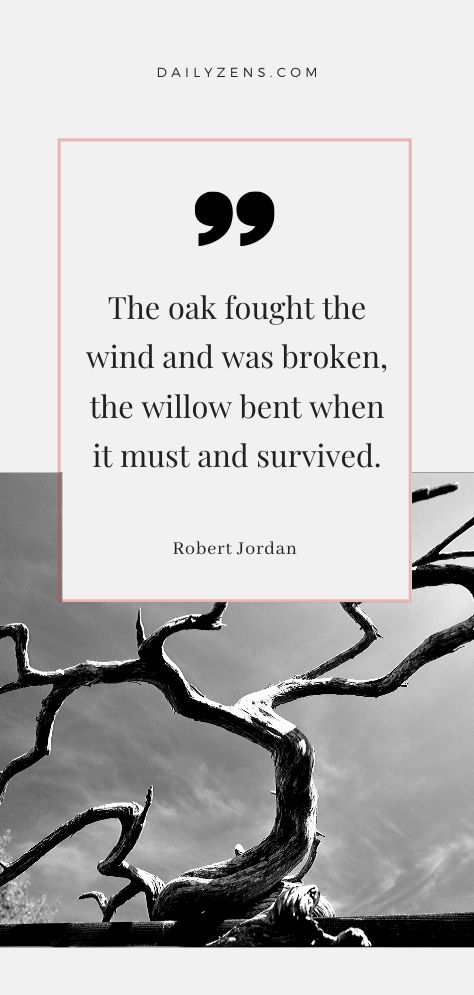 The oak fought the wind and was broken, the willow bent when it must and survived. Peace Quotes, Words Quotes, Wise Words, Life Quotes, Quotes On Success, Lyric Quotes, Sayings, Breaking Benjamin, Papa Roach