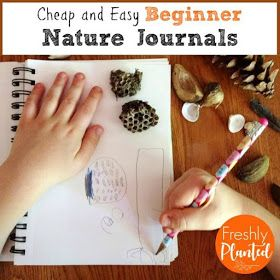 Easy Peasy Beginner Nature Journal Ideas for Kids