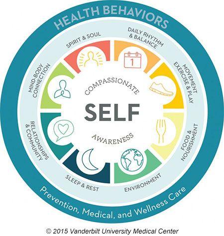 The Wellness Wheel Balancing Life Wellness Wheel Holistic Living Lifestyle Life Coaching Tools