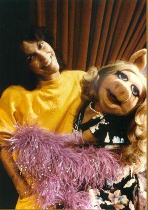 The Carpenters Karen Carpenter Karen Richards Muppets