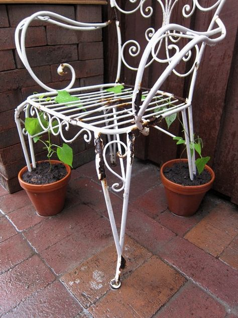 trellis chair (I'd attach the pot to the chair leg w/ wire or twine rather than place the leg directly in the soil)