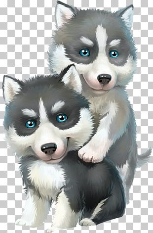 Perro De Trineo Husky Siberiano De Malamute De Alaska Png Clipart Puppy Wallpaper Cute Dogs Animals