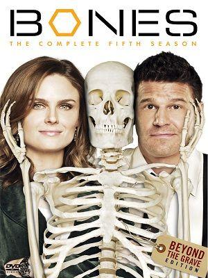 Assistir Serie Bones 5ª Temporada Dublado David Boreanaz
