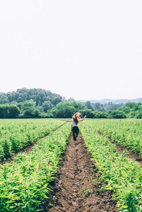 A Visit to Gaia Herb Farm | Ginger Tonic Botanicals