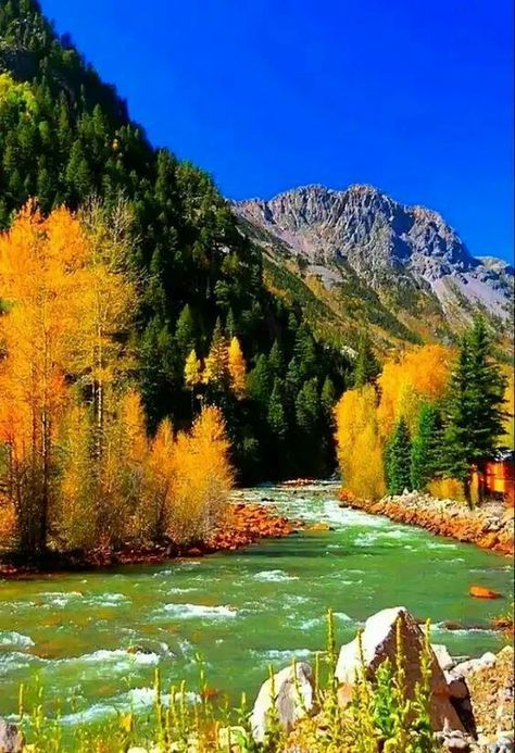 Wallpaper Paisagem Luzes 38 Super Ideas In 2020 Autumn Scenery Nature Photography Nature Pictures