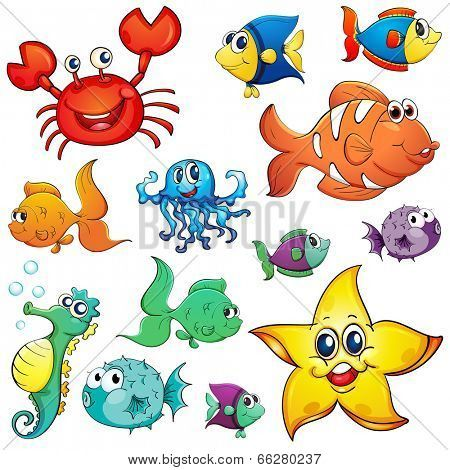 Illustration Of The Different Sea Creatures On A White Background Poster Id 66280237 Sea Creatures Cartoon Sea Animals Cartoon Clip Art