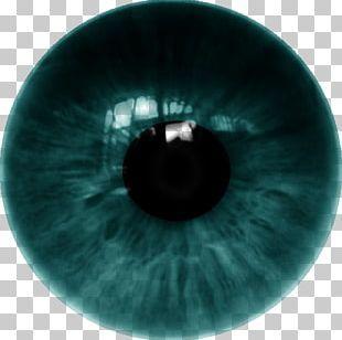 Human Eye Contact Lenses Png Clipart Circle Closeup Color Contact Lenses Desktop Wallpaper Free Png Downlo Studio Background Images Contact Lenses Lenses