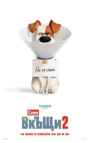 The Secret Life Of Pets 2 Film C O M P L E T O In Italiano Hd Thesecretlifeofpets2 Secret Life Of Pets Secret Life Illumination Entertainment