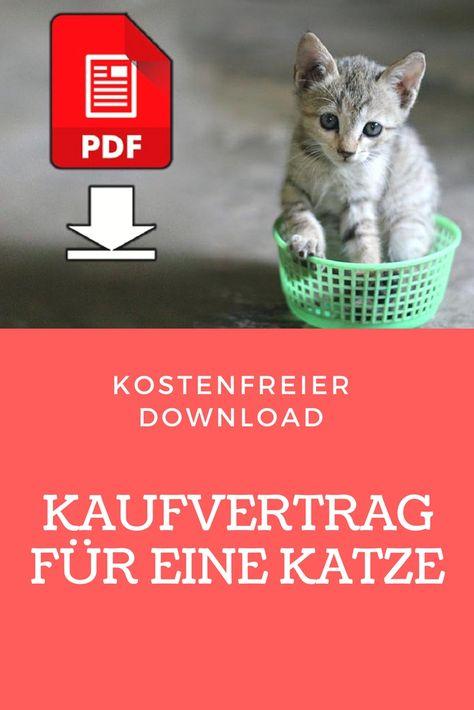 Die besten 25+ Kaufvertrag pdf Ideen auf Pinterest Eidgenossen - kaufvertrag küche pdf