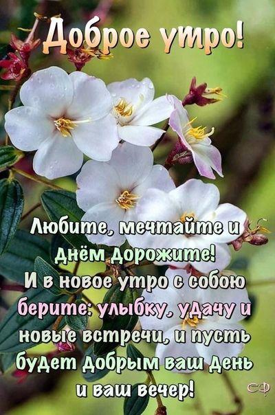 Fotografiya Dobroe Utro Utrennie Citaty I Citaty Pro Utro