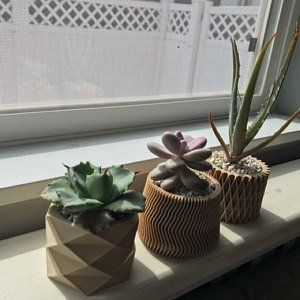 Minimalist Wood Planter For Your Succulents Or Cacti Made In