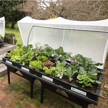 Large Vegepod With Stand Horkans Garden Centre In 2020 Raised Garden Beds Garden Beds Raised Beds