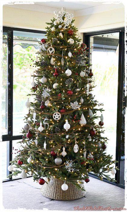 Julie Mceachern S Christmas Tree From Banksia Beach Qld Australia Christmas Tree Christmas Traditional Christmas Songs