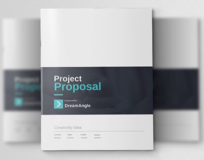 Dream Angle Corporate Project Proposal Brochures \ Proposal - project proposal