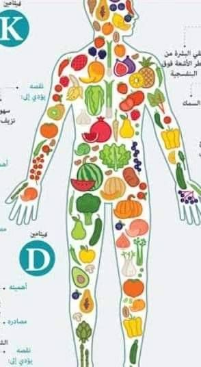 الخريطة الغذائية للجسم Fashion