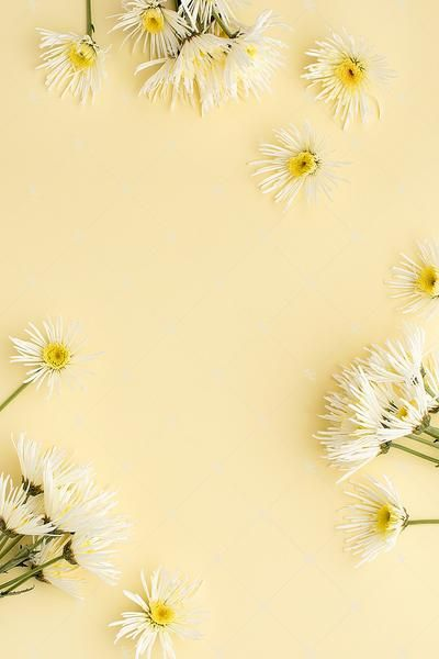 This Image Contains White Florals On A Soft Yellow Background Yellow Background Pastel Background Wallpapers Yellow Aesthetic Pastel