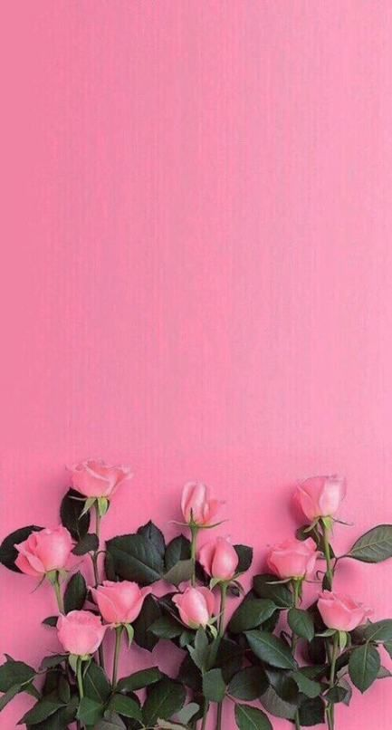 Flowers Pink Wallpaper Pretty Wall Papers 42 Ideas Flowers Wall