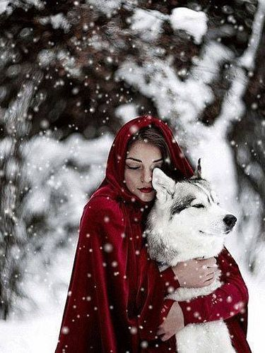 "Almost like in the fairy tale ""Little Red Riding Hood and the Wolf"", here only in an enchanting .- Almost like in the fairy tale ""Little Red Riding Hood and the Wolf"", only here in an enchanting winter world! Illustration Fantasy, Foto Fantasy, Fantasy Wolf, Wolf Love, The Wolf, Big Bad Wolf, Fantasy Photography, Photography Ideas, Winter Photography"