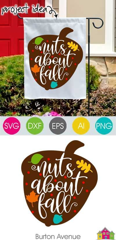 Nuts About Fall Svg File Svg File Fall Projects Cricut