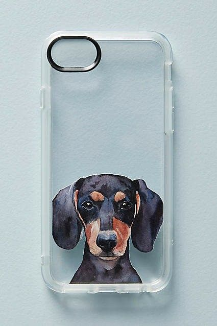 Pin By The Wooden Frog On Dachshund Goodies Dachshund Dog