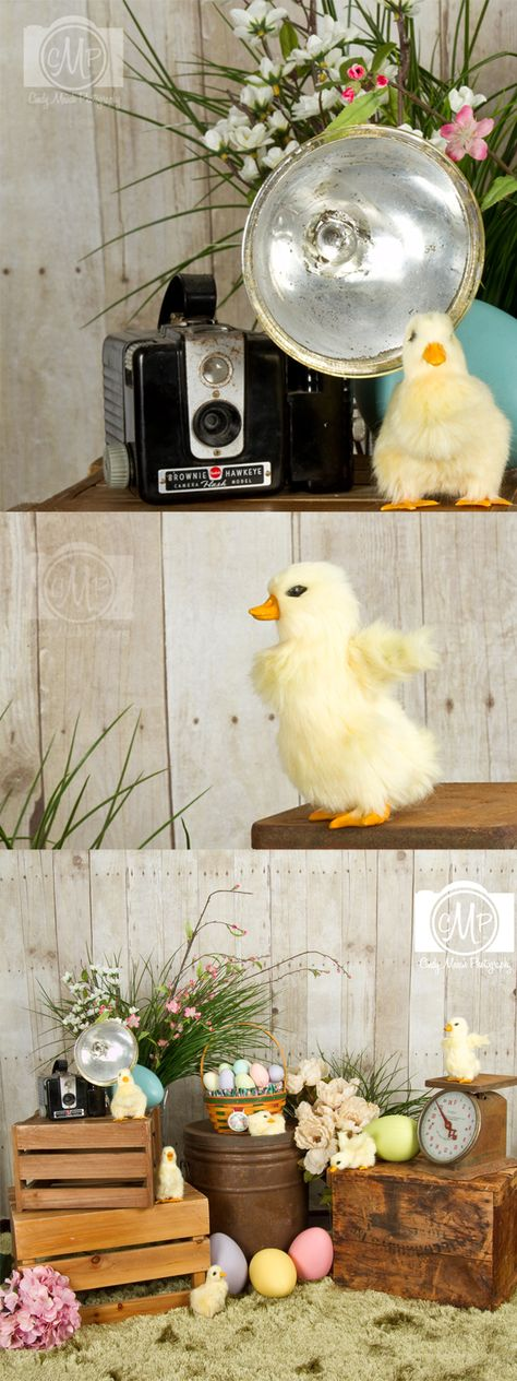 Easter Spring Picture Mini Sessions- really only like the crates and boxes