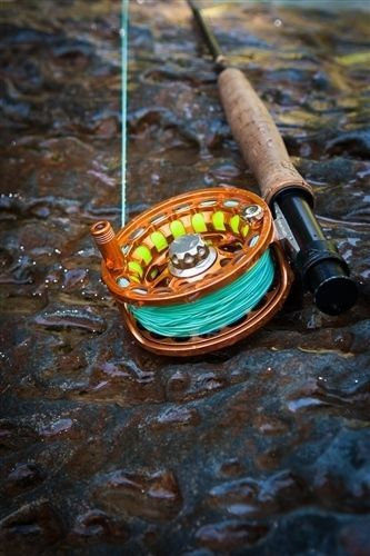 Ripple Weight Forward Fly Line Weight Forward Low Friction Bi Colored Floating Blue Halo Gear Fly Lines Ar Fly Fishing Fly Fishing Line Fly Fishing Basics