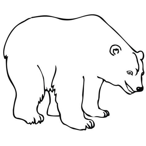Polar Bear Coloring Page Desenho Urso Polar Urso Polar Polar