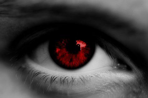 Do u like green eyes or hazel eyes? Beautiful Eyes Color, Pretty Eyes, Attractive Eyes, Black Dagger Brotherhood, Photos Of Eyes, Tired Eyes, Shall We Date, Perfect Eyes, Hazel Eyes