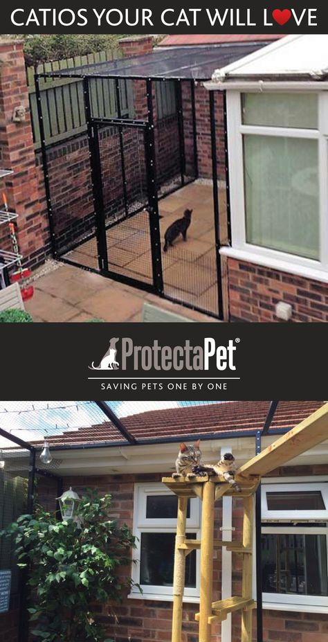 Catio Made To Measure For This Outdoor Patio Space Steel Frame For Longevity And Slimline Profile Fo Outdoor Cat Enclosure Outdoor Pet Enclosure Pet Enclosure