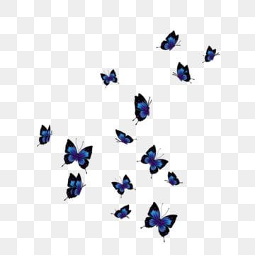 Beautiful Glowing Blue Butterfly Butterfly Glowing Blue Butterfly A Group Of Butterflies Png Transparent Clipart Image And Psd File For Free Download Blue Butterfly Butterfly Images Chill Wallpaper