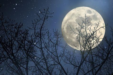 Was ist eigentlich ein Mondkalender?