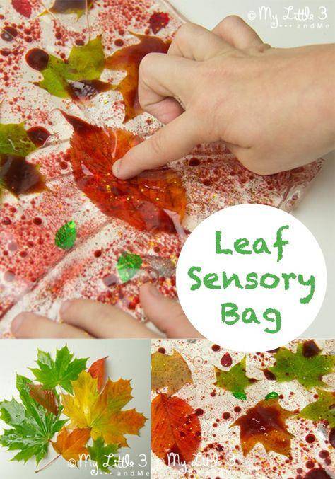 Make Leaf Sensory Bags, a fantastic Autumn sensory activity for kids.