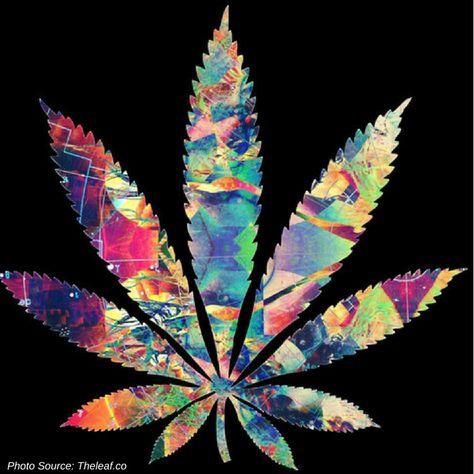"""Psychoactive"" Semantics of Cannabinoids | Cannabis Sciences"
