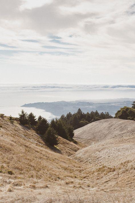 Mark + Magda | Mount Tamalpais, San Francisco