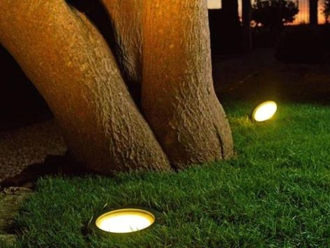 Spot Eclairage Arbre Exterieur Spots Arbre Castorama Prix Spot Exterieur Pour Eclairage Arbre Eclairage Exterieur Jardins Exterieur