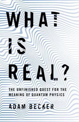 Pdf Download What Is Real The Unfinished Quest For The Meaning