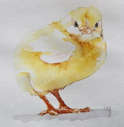 Poussin Aquarelle Aquarelle Art De Coq Arc En Ciel Dessin
