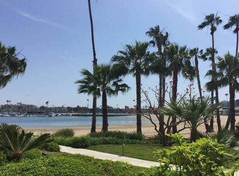 Day Trip to Marina del Rey Attractions Things To Do