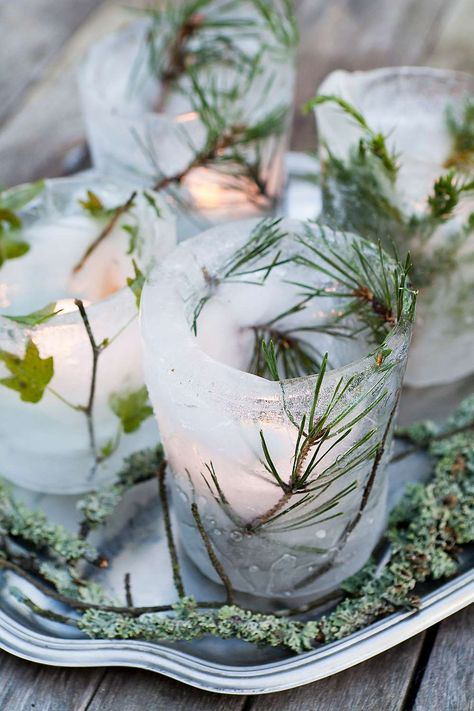 Greenery ensconced in ice votives
