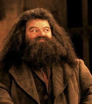 Happy Birthday Hagrid Harry Potter Aesthetic Harry Potter Images Harry Potter Movies
