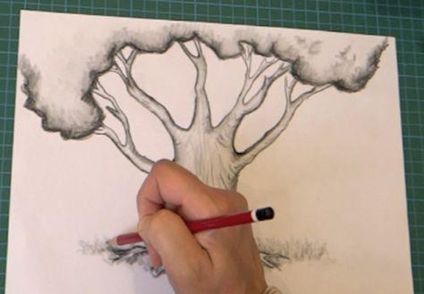 Comment dessiner un arbre, 3 choses à savoir!