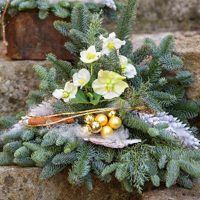 Elegante Grabgestaltung Dehner Grabgestaltung Pflanzen Grabschmuck