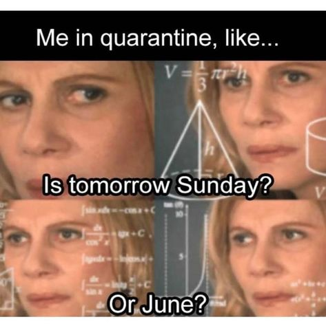 Sometimes it really does help to laugh through the pain, so we present to you the funniest memes about the quarantine—they're so funny, you might just cry! Crazy Funny Memes, Funny Video Memes, Really Funny Memes, Funny Animal Memes, Stupid Memes, Funny Relatable Memes, Haha Funny, Funny Jokes, Funny Stuff
